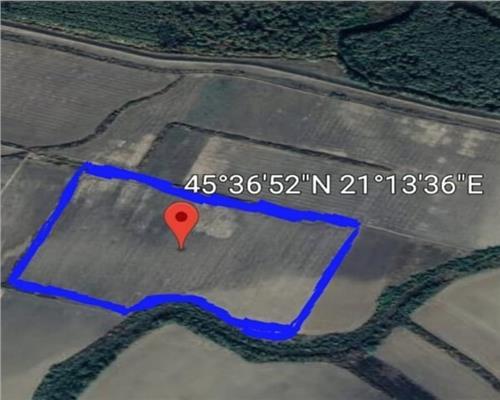 17 hectare Padureni extravilan comasat