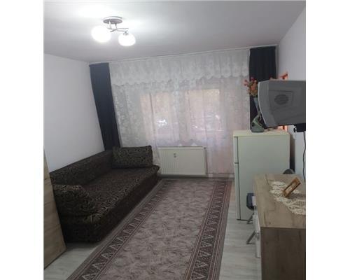 Apartament 1 Camera Renovat Zona Aradului