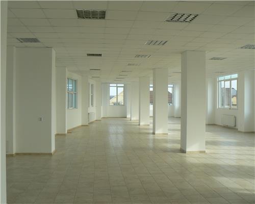 Oportunitate de investitie, cladire cu spatii comerciale si birouri in Dumbravita pe strada principala